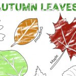 EASY Autumn Leaf Activities and Tracing Page